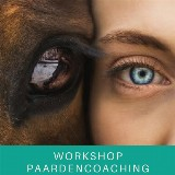 Workshop Paardencoaching 'Roeping vs Blokkade' door Ariënne Post